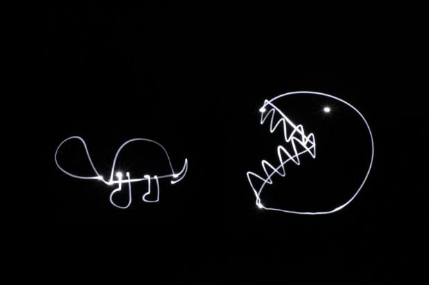 light_animals